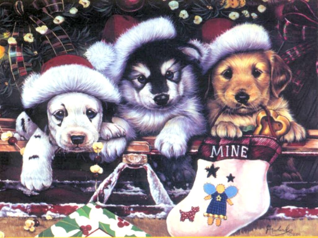 Adorable Puppies Christmas Wallpaper