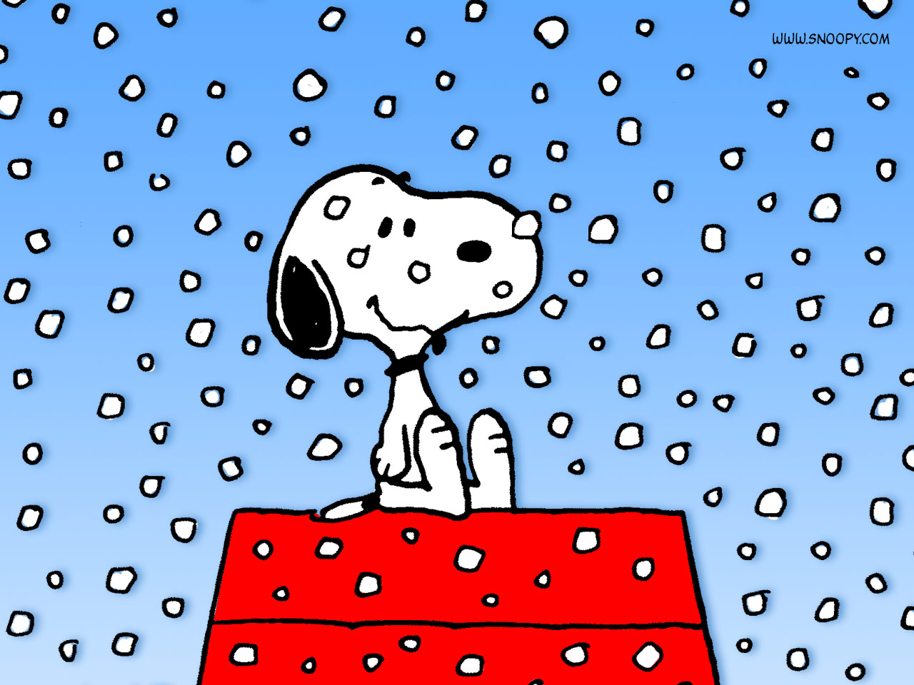 Droopy the dog cartoon droopy the dog pictures droopy the dog quotes - Snoopy Christmas Cartoon Viewing Gallery